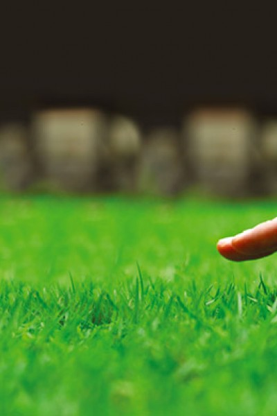 Your Lawn's professional treatments help to keep hundreds of Yorkshire's lawns looking lush and green.